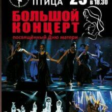 Большой концерт, посвященный Дню матери от народного ансамбля эстрадного танца «Синяя птица»